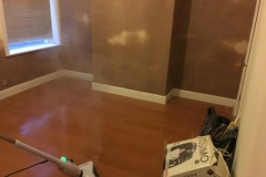 Rising Damp Completed 4