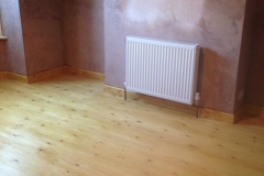 Rising Damp Completed 3